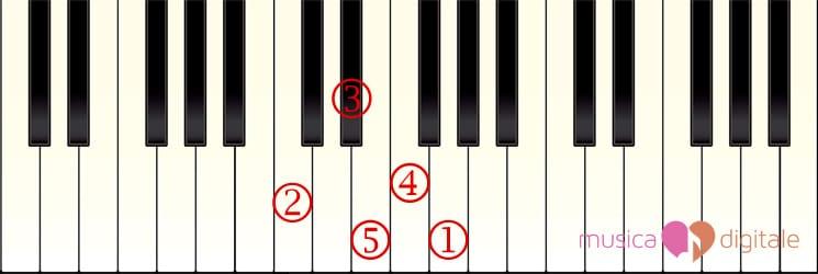 Immagine della tastiera con evidenziate le note