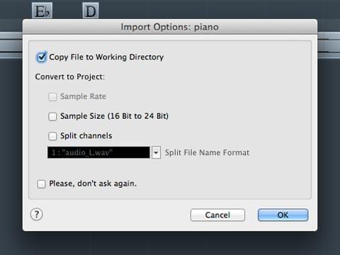 La finestra delle opzioni di importazione di un file audio